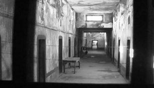 torturat e deputeteve