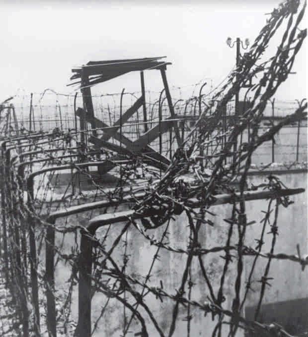 Tela me gjemba në burg
