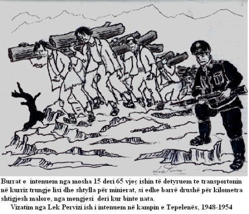 Skicë e Lek Previzit